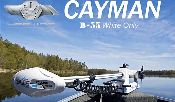 Cayman B 55 lbs Electric Motor
